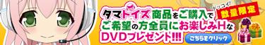 タマトイズプレゼントキャンペーン!DVD