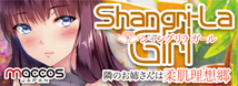 maccos Shangri-La Girl(シャングリラガール)【ねっとり吸着する極粒イボ二層構造 600グラム 非貫通 国内メーカー】