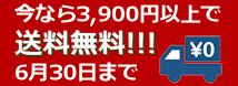 今なら3,900円以上で 送料無料!!!