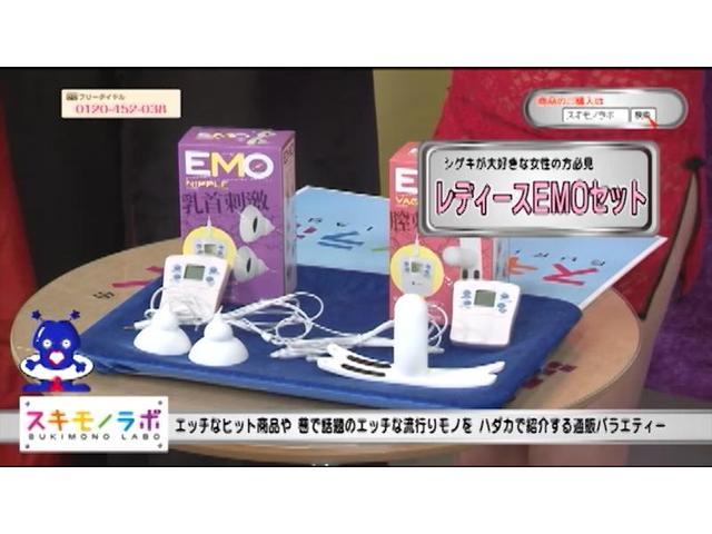 【販売終了・アダルトグッズ、大人のおもちゃアーカイブ】レディースEMO セット(EMO(イーモ) ヴァギナ、ニップル セット)