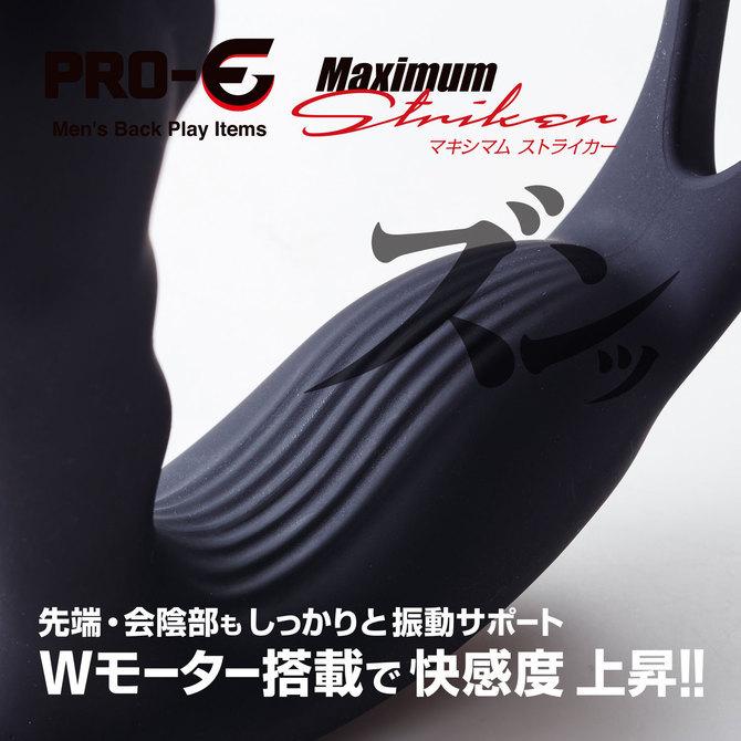 PRO-E Maximum Striker(プロイー マキシマム ストライカー) セット 商品説明画像5
