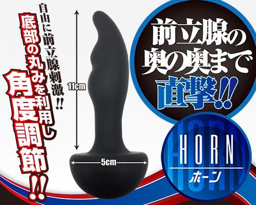 【業界最安値!】アナスピン ホーン 商品説明画像5