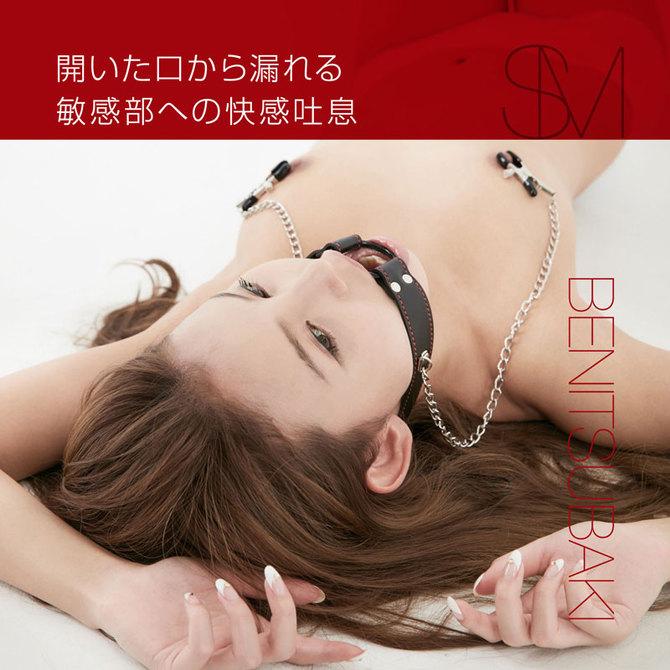 紅椿 BENITSUBAKI ギャグ&乳首クランプ ◇ 商品説明画像4
