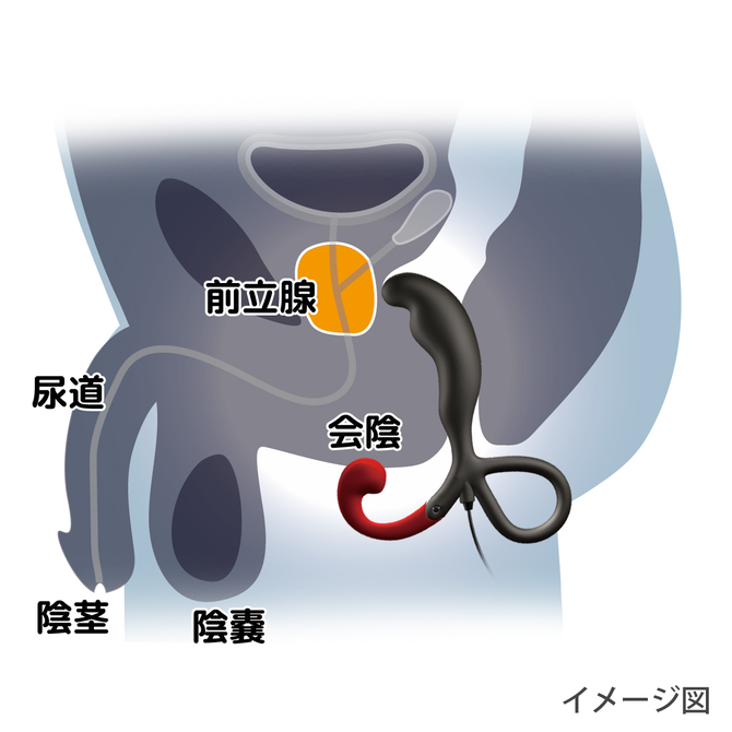 Enemable R Type-1 エネマブルR ◇ 商品説明画像6