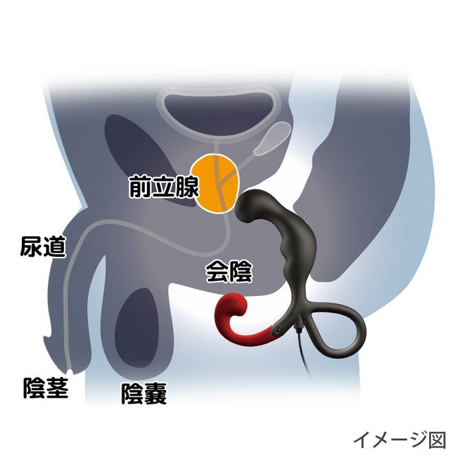 Enemable R Type-2 エネマブルR 商品説明画像6