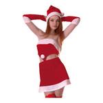 【クリスマスセール!12月25日まで】クイーンサンタ PC010333
