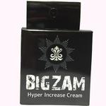 BIGZAM     TET-018