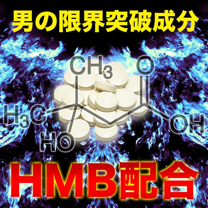 BIG SYMBOL     RSG-018 商品説明画像5