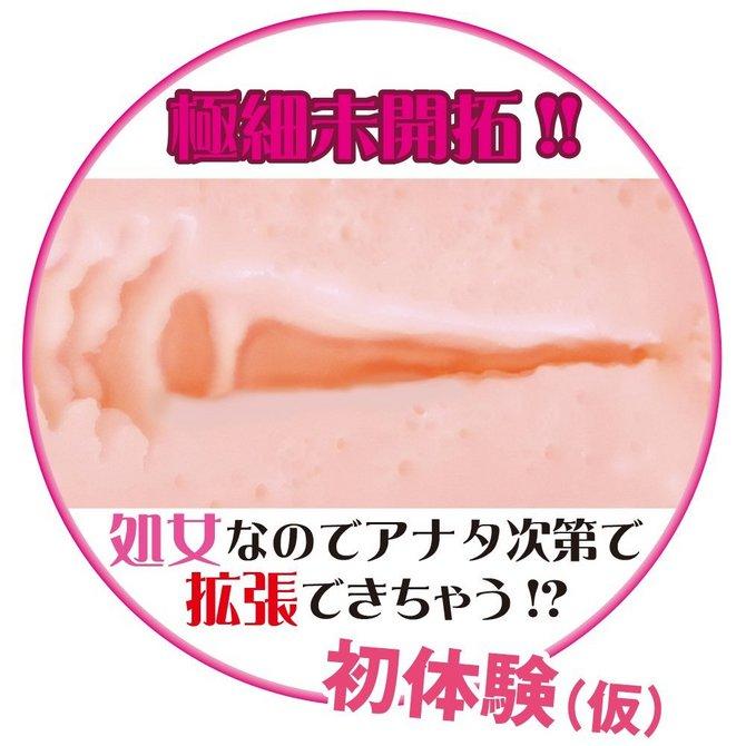 ヴァージンエイジ〜入学〜(Virgin age〜Admission〜) 商品説明画像4