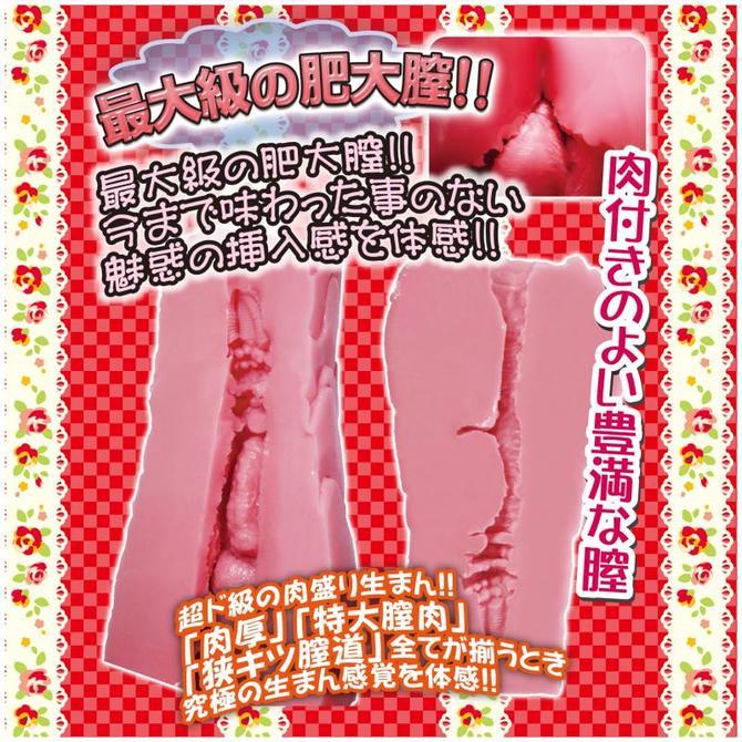 【販売終了・アダルトグッズ、大人のおもちゃアーカイブ】サオ圧! 肥大膣 商品説明画像3