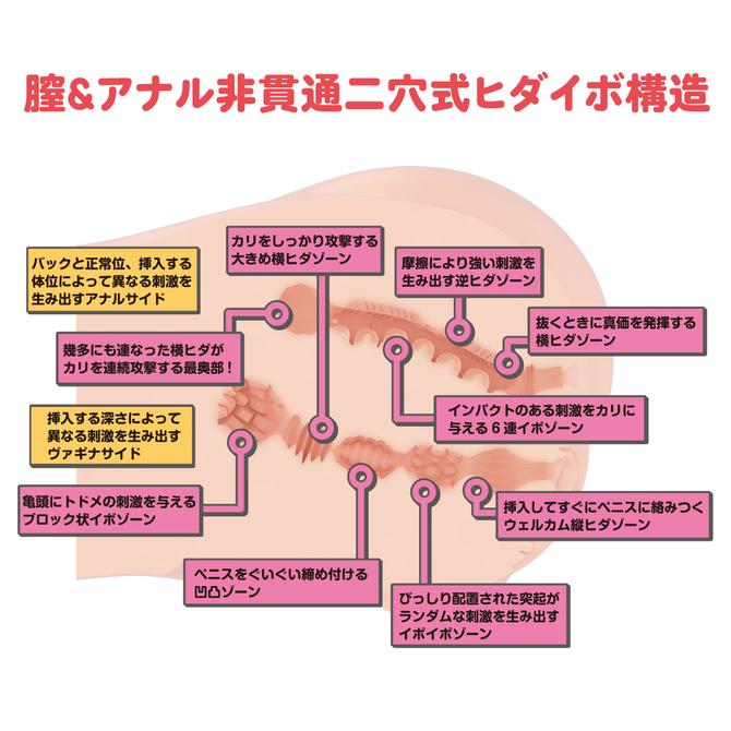 【限定2500ポイント還元!】リアルボディ+3Dボーンシステム Dカップ姉川ゆら 商品説明画像6