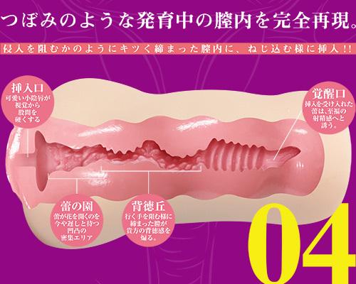 生素体 04 商品説明画像5