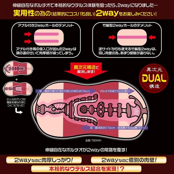 【50〜60%OFF!】極彩 ウテルス デュオ Uterus Duo 商品説明画像3