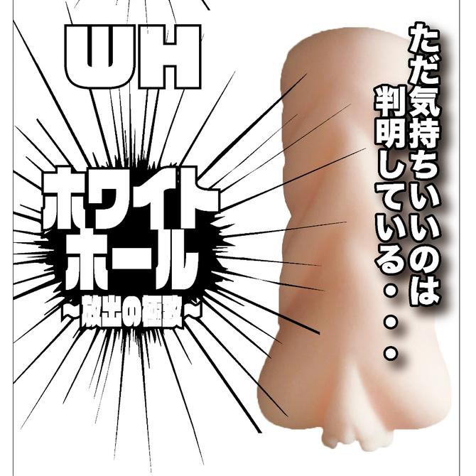 ホワイトホール〜放出の極致〜 商品説明画像2