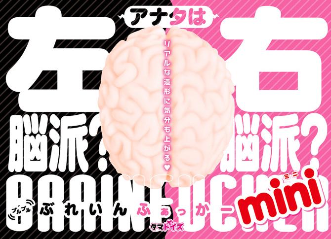 プルプルぶれいんふぁっかー miniTMT-1501 商品説明画像2