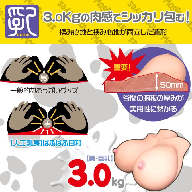 【人工乳房】ぱふぱふ日和3.0 商品説明画像3