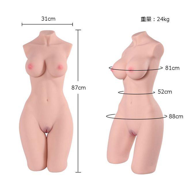 【限定1000ポイント還元!】M ボディ MSD082(骨格入り究極のグラマラスボディ24kg!) 商品説明画像5