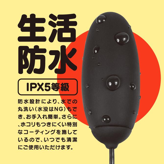 GPRO BLACK ROTOR [HEATING]     UGPR-209 商品説明画像4